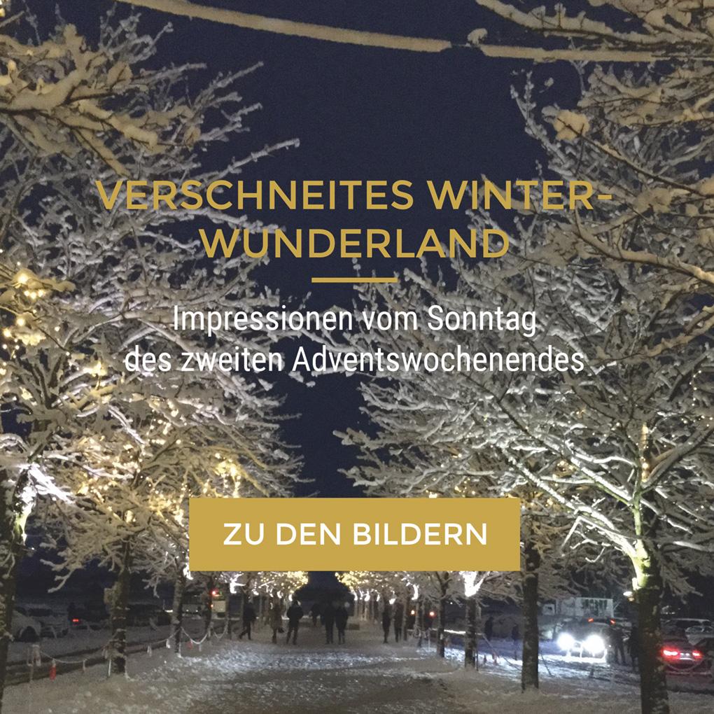 Landgut-im-Schnee_2017
